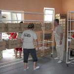 Pakovanje jednodnevnih tovnih pilića